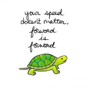 Forward is forward tortoise